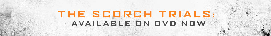 The Scorch Trials. Available on DVD now.